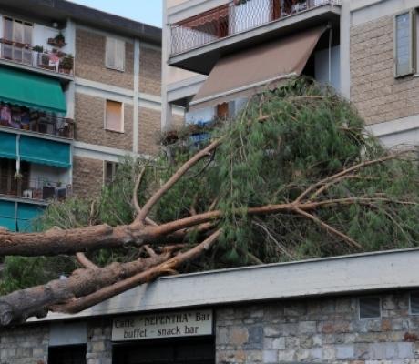 Nubifragio Firenze, dichiarato stato di emergenza
