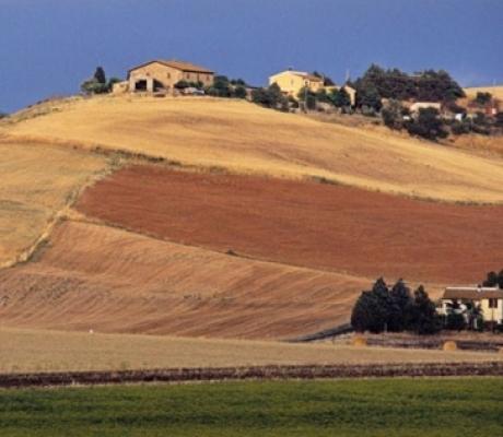 TURISMO - Positivo l'andamento degli agriturismi in Toscana