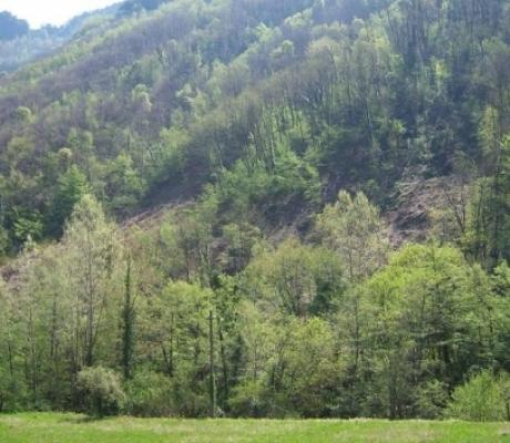 Zone montane e svantaggiate, investimenti e sostegno per messa in sicurezza territorio
