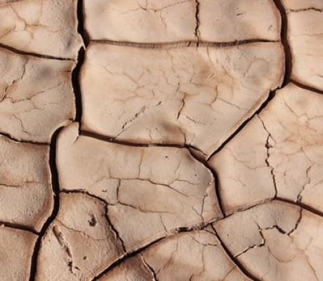 Basilicata e Puglia a rischio desertificazione, è crisi idrica al sud Italia