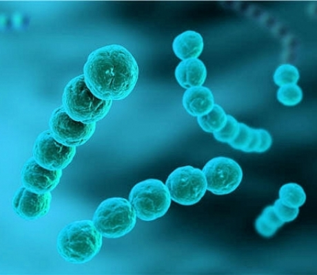 Meningite da Meningococco B, nuovo caso a Empoli