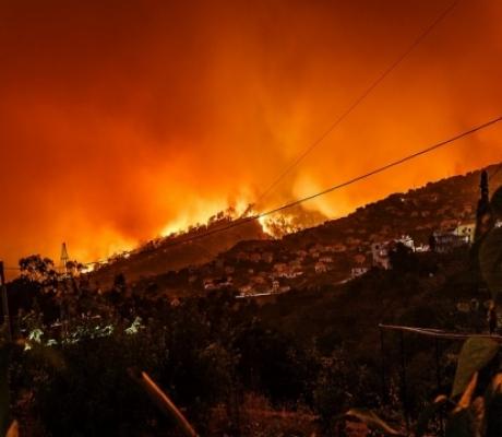 Incendi, dichiarato stato emergenza in Toscana