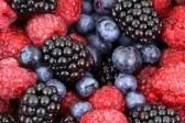 Epatite A e frutti di bosco, i risultati dell'indagine