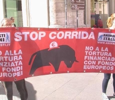 Stop alla corrida, appello all'Europa per smettere di finanziare allevamenti tori