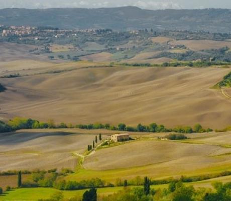 """ECONOMIA – Arriva il marchio """"Toscana"""" per le imprese"""
