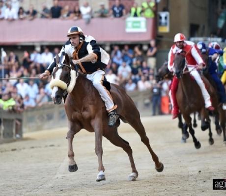 Palio di Siena 16 Agosto 2018, vince la Lupa. LE IMMAGINI