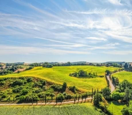"""Le associazioni del biologico italiano lanciano un appello: """"Serve Legge sul bio, non perdiamo primato e risorse UE"""""""