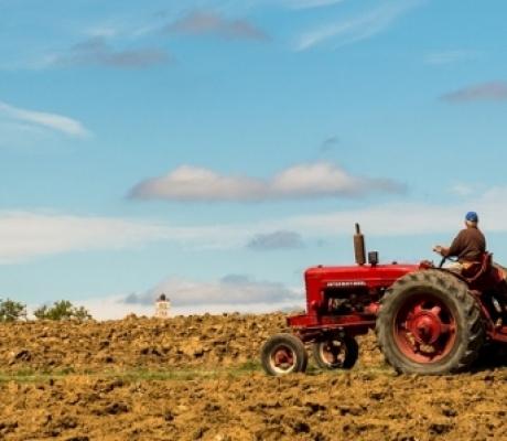CONSORZIO ITALIANO DI CORIASSICURAZIONE CONTRO LE CALAMITA' NATURALI IN AGRICOLTURA